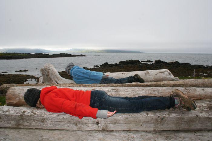 Plankað á alvöru rekaviðarplönkum