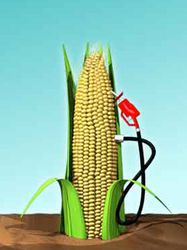 corn_fuel_pump