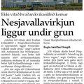 Kvikasilfur 2 080223