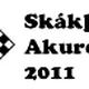 skakthing logo