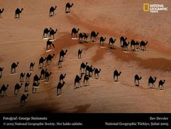 National Geographic Turkiye