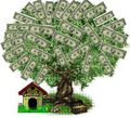 money_tree5