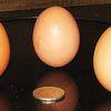 Þrjú egg