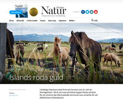 islands-roda-guld-forsida