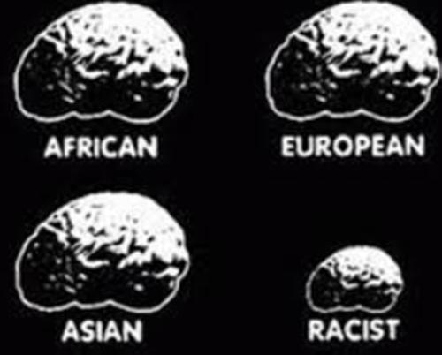 2017 rasisti