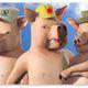 Johanna steingrimur gylfi pigs