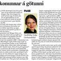 Moggi 081213 GuðfrLilja Fílar