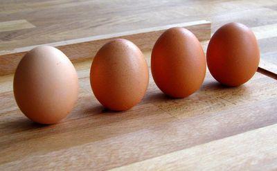 standandi_egg.jpg