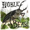 Andrew Bird - Noble Beast / Useless Creatures