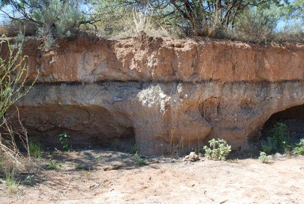 Murray Springs Arizona