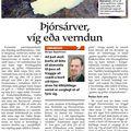 24 080911 Bergur Þjórsárver