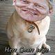 The Mayor Of Reykjavik Iceland Barks Like a Dog In Vienna