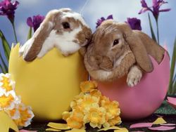 easter-wallpaper-003-1024