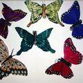 comparison butterfly vz57plus colorprecision