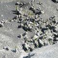 Gígjökull 11.6.2010