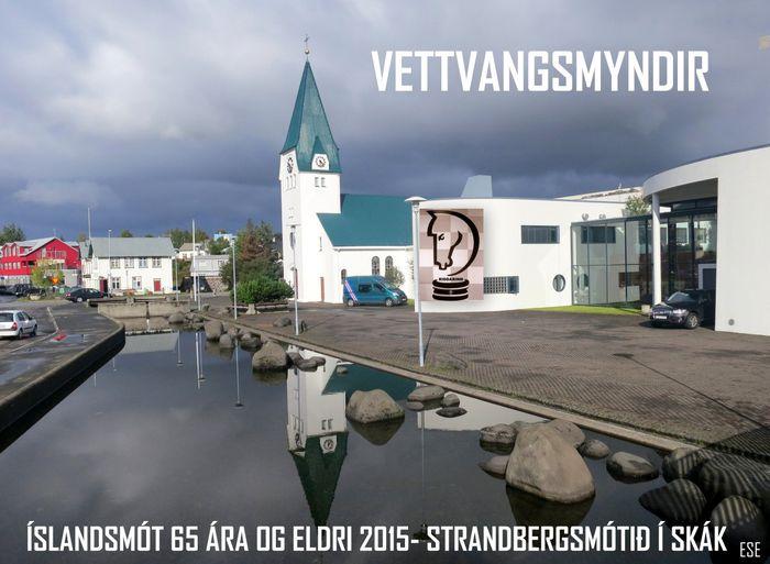 ÍSLM. 65 ára og eldri 2015   ESE.2014 14 17 56