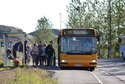 bus (Small)