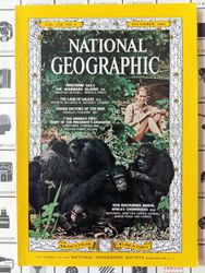ng_jg1965_chimpanzees.jpg