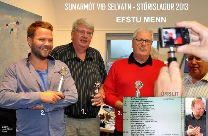 SELVATN 2013 ESE7