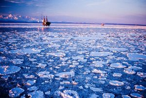 Arctic-Oil-platforms-offsohre