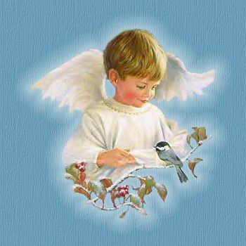 c_documents_and_settings_gulli_my_documents_my_pictures_jesus_mappa_mt-angel-boy-pic