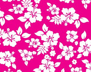 hibiscus-flower-background-1485007724aCe