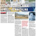 DV 090710 Kennitöluflakk Stím feðga