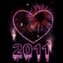 2011. 1.1.11