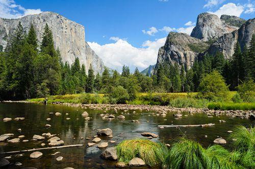 Valley View Yosemite August 2013 002